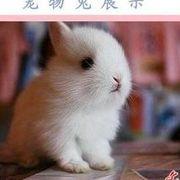★♀兔の兔つ♀★