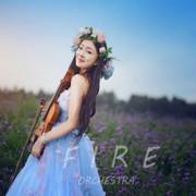 小提琴手🎻阳阳阳